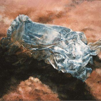 Anatomia de la construccion_plastico en rosa 81x116 cm 1990