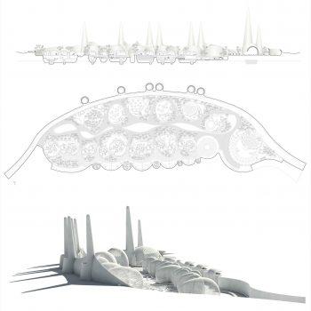 Cinco generaciones de arquitectos24