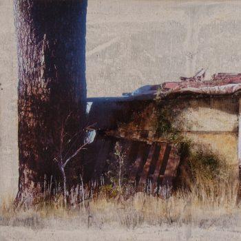 Naturaleza y arquitectura. Muros_Huertas 1.30x60 cm. Oleo tabla. 2009
