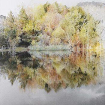 Pocket painting_Pantano I 13-IV-20. 20h20 mn. Oleo foto aluminio