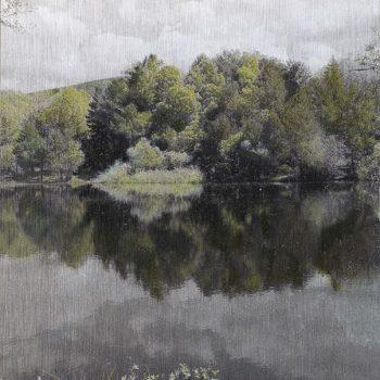 Pocket painting_Pantano derecha IV. 8-V-20. 12h27 mn.2020