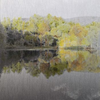 Pocket painting_Pantano derecha II .22-VI-20. 21h07mn. Oleo foto aluminio
