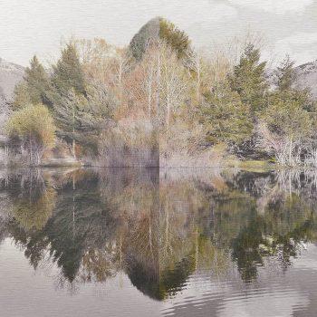 El tiempo en la naturaleza_11 Simetría.Inviern 18 Primavera 18. 36,3x 55 cm