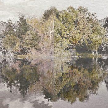 El tiempo en la naturaleza_12 Simetría. Primavera 18 Verano 18. 36,3x 55 cm