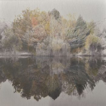 El tiempo en la naturaleza_15 Simetria. Otoño 17Invierno 18 . 30x30 cm