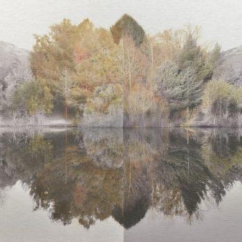 El tiempo en la naturaleza_15 Simetria. Otoño 18 Invierno 18. 36,3x 55 cm