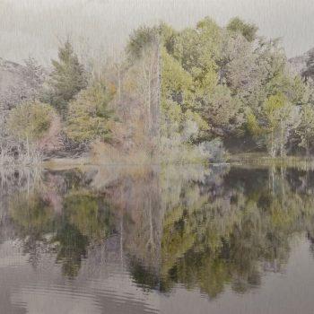 El tiempo en la naturaleza_17 Simetria. Primavera 18 Verano 18. 36,3x 55 cm +suave
