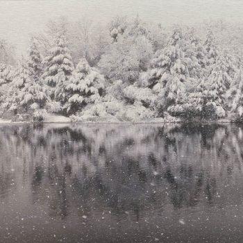 El tiempo en la naturaleza_3 Reflejos de invierno en pantano nevando I. 6-1-18, 14h08 mn. 36,3x 55 cm
