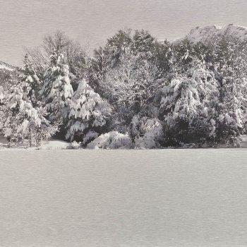 El tiempo en la naturaleza_4 Reflejos de invierno en pantano nevada II. 8-1-18, 14h06 mn . 36,3x 55 cm