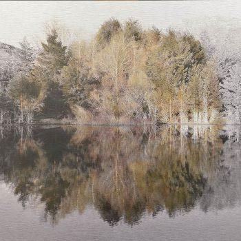 El tiempo en la naturaleza_5 Reflejos de primavera en pantano I 7-IV-18, 19h59 mn . 36,3x 55 cm (2)