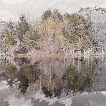El tiempo en la naturaleza_6 Reflejos de primavera en pantano II. 14-4-18, 18h39 mn .36,3x 55 cm