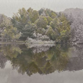 El tiempo en la naturaleza_8 Reflejos de primavera en pantano I . 26-V-18, 11h0 1 mn. 36,3x 55 cm