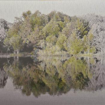 El tiempo en la naturaleza_9 Reflejos de verano en pantano. 21-VI-18, 20h22 mn. 36,3x 55 cm