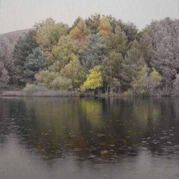 El tiempo en la naturaleza_Esfera.Otoño.10-XI-19.16h06 mn.40x40 cm.