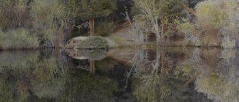 el tiempo en la naturaleza_Fragmento 3 . 30x150 cm.2020